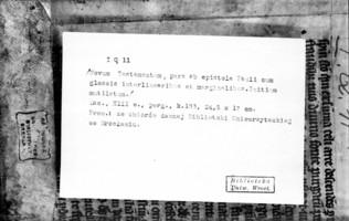 05174503.jpg